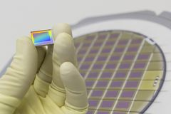 Free Silicon Wafer With Microchips, Fixed In A Holder With A Steel Frame On A Gray Background After The Process Of Dicing. Microchip Royalty Free Stock Photos - 155340088