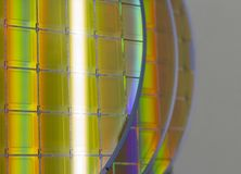 Silicon Wafers and Microcircuits - A wafer is a thin slice of semiconductor material, such as a crystalline silicon, used in royalty free stock images
