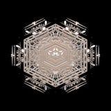 Silicone della forma di arte del fiocco di neve royalty illustrazione gratis