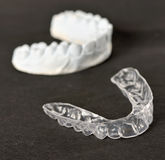 Silicone dental tray. And mold isolated Stock Photography
