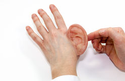 Silicone umano artificiale dell'orecchio del prodotto finito fatto Fotografia Stock