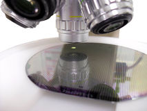 Silicone wafer under the microscope Royalty Free Stock Image