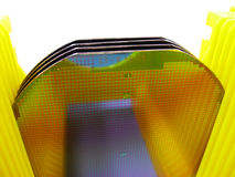 Silicone wafer in a yellow Carrier. Image of the silicone wafer in a yellow Carrier royalty free stock photo