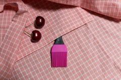 Silikonbürste und Kirsche zwei auf rosa Gitter Stoff Lizenzfreies Stockbild