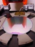 Silikonoblate in einem Behälter Stockfoto
