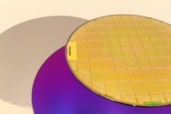 Silikonowi opłatki trzy typu pusty popielaty opłatek, purpurowy opłatek z SiO wafes z mikroukładami -, ekranowymi i złocistymi zdjęcia royalty free