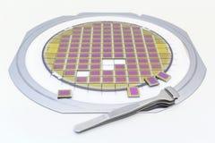 Silikonrån med mikrochipers som fixas i en hållare med en stålram på en grå bakgrund efter processen av att tärna microchip arkivbilder