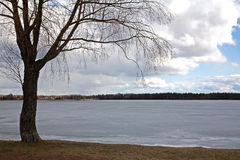 Siljan湖在Mora 瑞典 库存照片