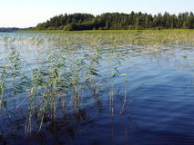 Siljan lake Sweden Royalty Free Stock Photography