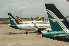 Silk авиакомпания воздуха с знаком птицы на кабеле Стоковое Изображение RF