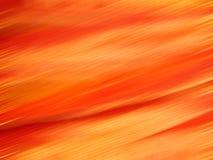 Silk картина с фильтром нерезкости движения Стоковые Фото