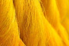 silk Arkivbild