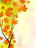 silk blom- leaves för höst stock illustrationer