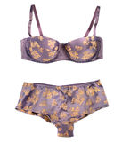 Silk bra and panties Royalty Free Stock Photography