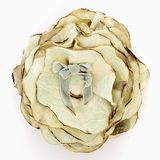 Silk brooch Stock Photos