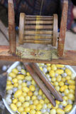 Silk cloth production Stock Images