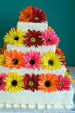 Silk Daisy Cake Royalty Free Stock Image