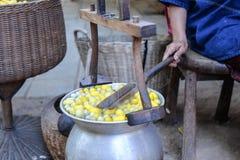 Silk fiber making - Cocoon Stock Image