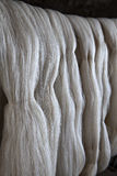 Silk fibers Royalty Free Stock Images