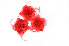 Silk flower. 3 red silk flower on a white background Royalty Free Stock Photo