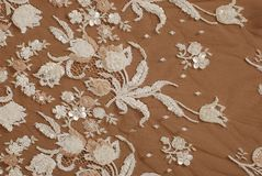 Silk lace texture Royalty Free Stock Image