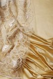 Silk lace texture Stock Photo
