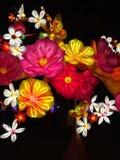 Silk lantern flowers. Night lit silk lantern flowers Royalty Free Stock Images