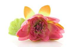 Free Silk Lily Royalty Free Stock Photo - 13983735