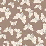 Silk moth almond seamless vector pattern Royalty Free Stock Image
