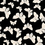 Silk moth black seamless vector pattern Royalty Free Stock Image