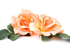 Silk orange roses Royalty Free Stock Photo
