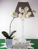 Silk orchid and lamp Stock Photo