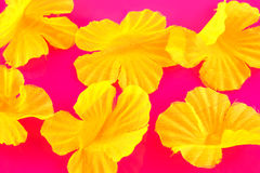 Silk petals Royalty Free Stock Photo