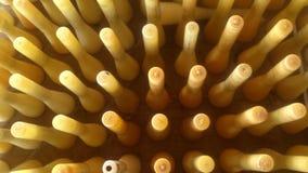 Silk plastic roll. Plastic silk roll at silk factory Stock Image