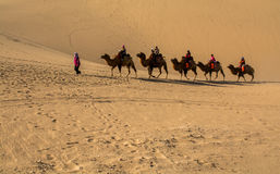 The Silk Road. Dunhuang,Gansu, China - October 11, 2014: Group of tourists are riding camels in the desert at Dunhuang City , China. This place is a part of silk Royalty Free Stock Images