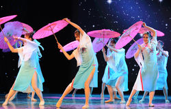 The Silk Road Flower Rain-national dance Stock Photography