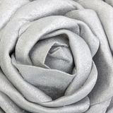 Silk silver rose Stock Photo