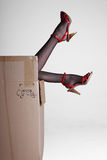 Silk stockings high-heeled shoes Royalty Free Stock Photo