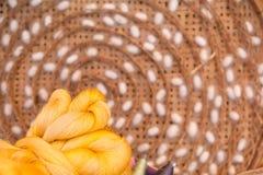 Silk thread and silkworm cocoons Stock Photos