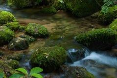 Silk vatten Fotografering för Bildbyråer