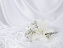 silk white för lilja Arkivbilder