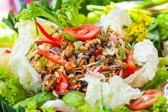 Silk worm salad Stock Photography