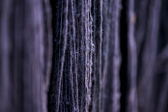 Silk yarn dyed by nature color. Close up, Marco stock image