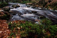 Silkeslen kaskad i Ardennen Belgien fotografering för bildbyråer