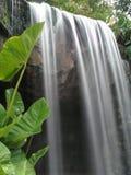silkeslen slät vattenfall Arkivbilder