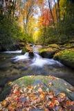Silkeslena Autumn Stream i Smokiesen Royaltyfria Bilder