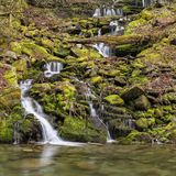 Silkeslena säsongsbetonade Catskills vattenfall royaltyfria bilder