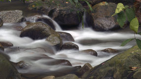silkeslent flöde fotografering för bildbyråer