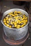 Silkwormböld, silk behandla för rad Royaltyfri Foto