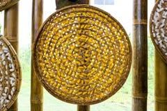 Silkwormkokong Fotografering för Bildbyråer